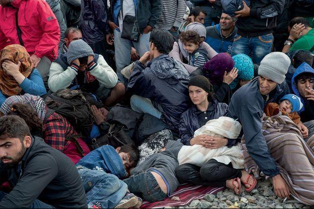 Des Syriens s'entassent sur les voies ferrées de Tovarnik, en Croatie, dimanche 20 septembre. Ils embarqueront à bord d'un train sans connaître sa destination.