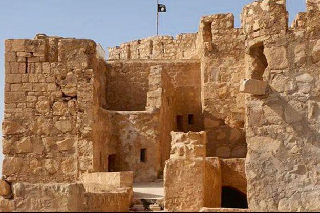 La citadelle mamelouke du XVIe siècle qui domine la ville porte maintenant leur emblème.