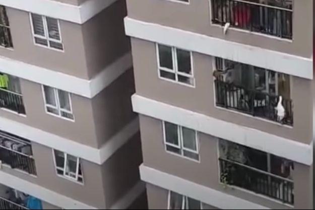 La fillette de 2 ans suspendue au-dessus du sol à un balcon situé au 12ème étage d'un immeuble.