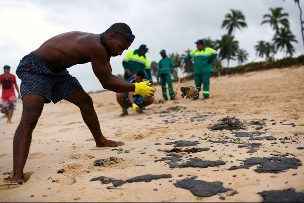 Un homme ramasse le mazoute sur une plage brésilienne, le 22 octobre.