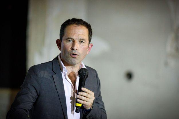 Benoît Hamon à la Charité-sur-Loire, le 10 juillet.