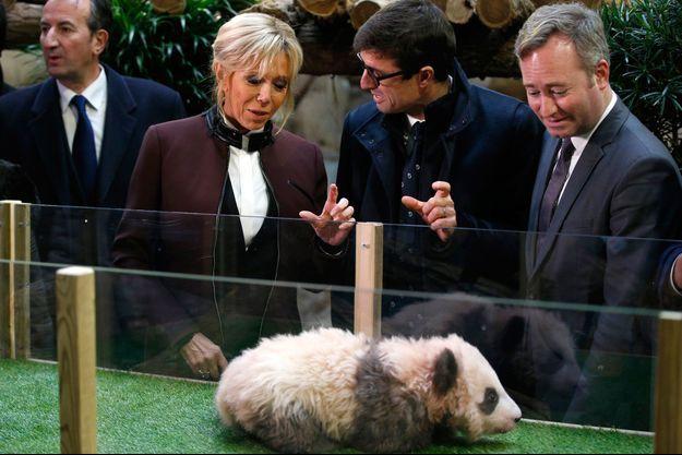 Brigitte Macron, Rodolphe Delord et Jean-Baptiste Lemoyne en décembre 2017 lors du baptême du bébé panda du zoo de Beauval.