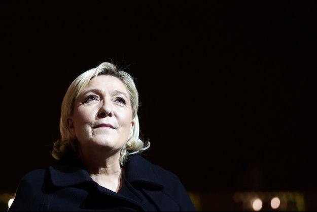 Marine Le Pen, à l'Elysée en novembre 2017