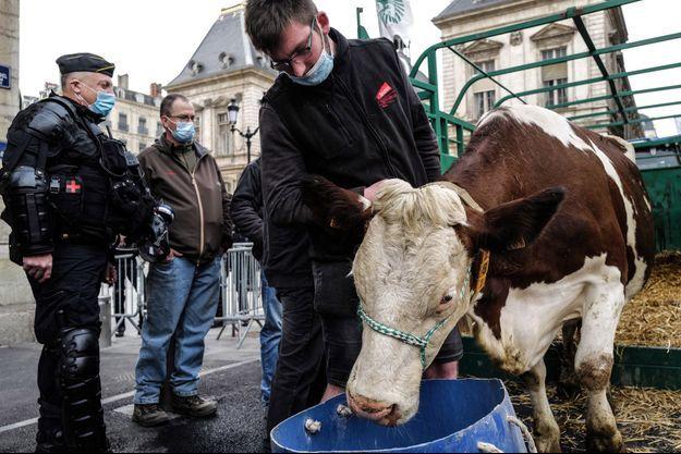 Des éleveurs ont protesté lundi devant l'hôtel de ville à Lyon.