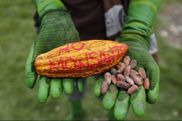 La société Monsanto est dans le collimateur de nombreux activites écologiques (photo d'illustration)