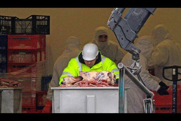 Le 15 février, l'entreprise Spanghero jette de la viande non-conforme.
