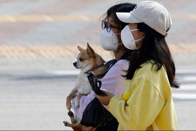 Deux personnes portant un masque tiennent un petit chien en Corée du Sud.