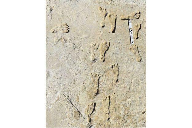 Les traces de pas dans le désert de gypse blanc situé au Nouveau-Mexique, dans le parc national de White Sands.