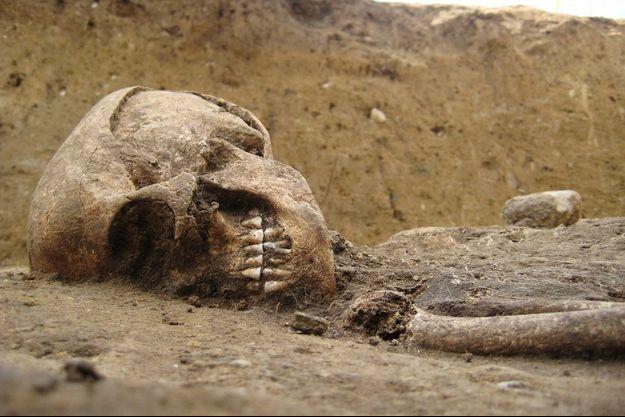 """Les ossements de la """"dame de Bietikow""""."""