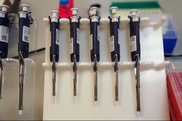 L'analyse a été réalisée sur un demi-million de profils ADN (image d'illustration).