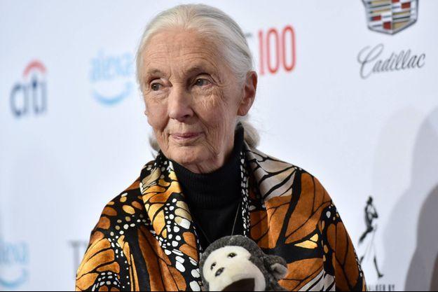 Jane Goddall en 2019 à New York.