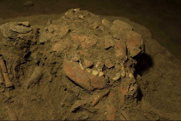 Le squelette, relativement bien préservé, appartenait à une jeune femme de 17 à 18 ans, enterrée en position foetale dans la grotte de Leang Panninge, au Sud de l'île de Célèbes.