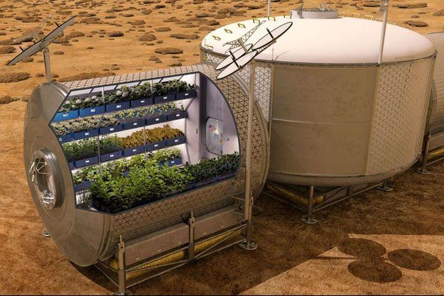 Les début des cultures de pommes de terre commenceront en janvier 2016.