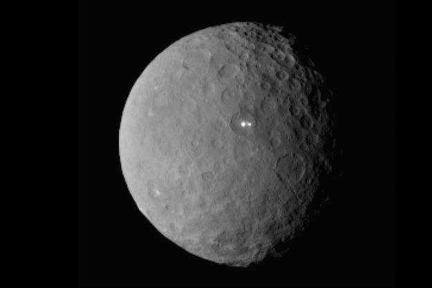 Cérès, photographiée par la sonde Dawn, le 19 février. Elle se trouvait alors à 47 000 kilomètres de la petite planète naine.
