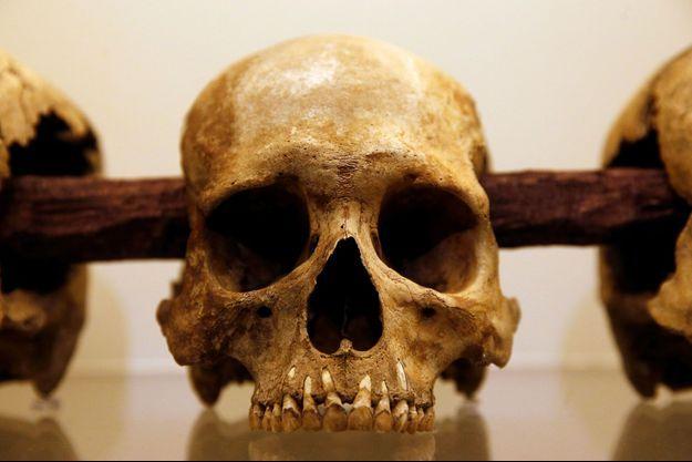 Crâne exposé à Mexico en novembre 2017
