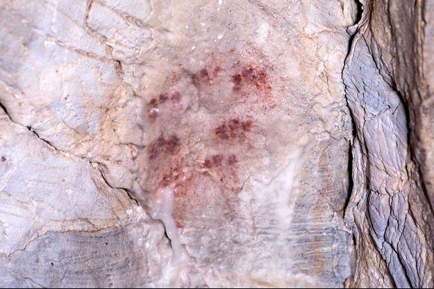 Les peintures dans la grotte d'Ardales, dans le Sud de l'Espagne.