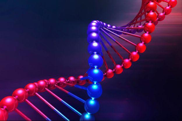 ADN ethnique: la passion des origines