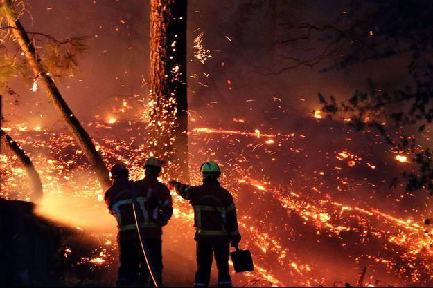 L'incendie spectaculaire de la forêt de Chiberta, une zone de pinède de 270 hectares en plein coeur de ville à Anglet, a détruit 165 hectares de végétation.
