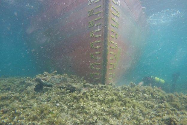 Le Rhodanus vu sous l'eau.