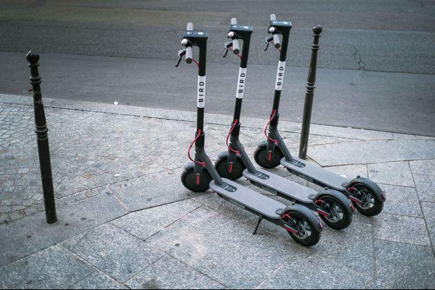 Trottinettes électriques de la marque «Bird» à Paris.