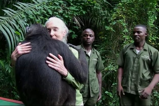 Un câlin en guise d'adieu entre Jane Goodall et Wounda.