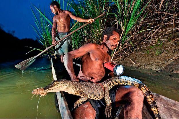 Le crocodile et sa symbolique font partie du quotidien. On le pêche sur le fleuve Sepik et on en exploite toutes les parties.