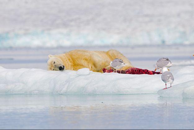Selon le rapport, les eaux de la planète ont absorbé plus de 93% de la chaleur supplémentaire résultant du réchauffement depuis les années 1970