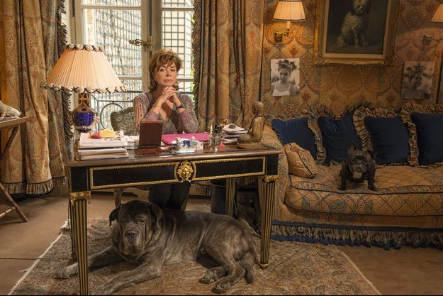 Dans l'hôtel particulier de la rue des Saints-Pères, Dominique près d'un portrait de Sophie à 5 ans. Sa fille lui a laissé le bouledogue Mimi le temps d'un concert à Istres. Sous le bureau, Bable, le cane corso.