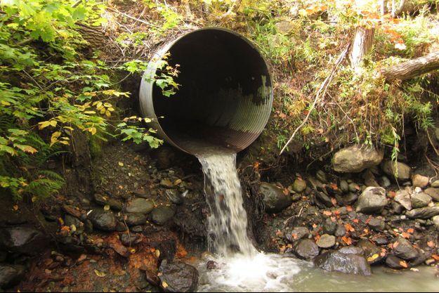 Près de 8 milliards de litres d'eau usées devraient être deversées dans le Saint-Laurent.