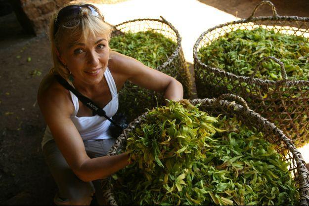 Experte mondiale de l'Aromathérapie et spécialiste des huiles essentielles, Isabelle Pacchioni récolte et préserve ce que la nature nous donne de plus précieux.