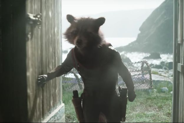 "Rocket Raccoon dans ""Avengers : Endgame"""