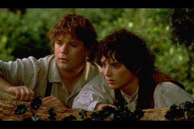 """Frodon et Sam dans """"Le Seigneur des anneaux"""""""