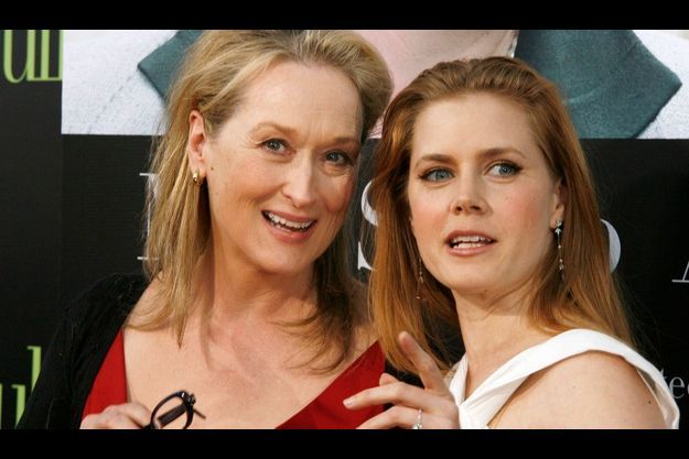"Meryl Streep est radieuse dans ""Julie et Julia""."