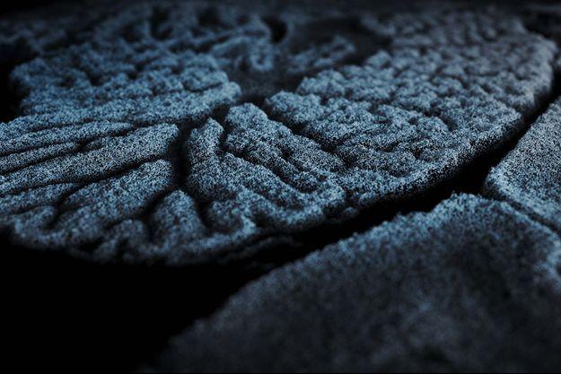 Une image extraite d'«Evolver : Prologue».