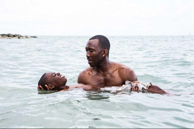 """""""Moonlight"""" de Barry Jenkins, Oscar du meilleur film, est toujours dans les salles"""