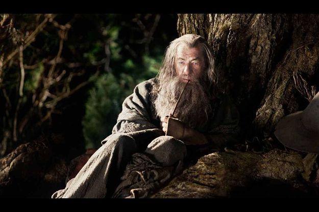 Le célèbre Gandalf.