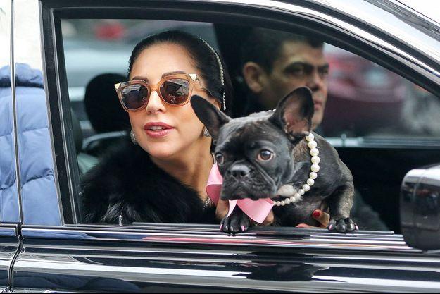 Lady Gaga et son chien Asia, en 2015 à New York.