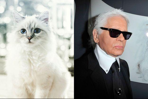 Choupette, un vrai chat de luxe