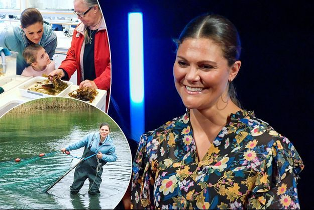 La princesse Victoria de Suède le 29 août 2017. En vignettes : à Askö le 29 septembre 2017 avec sa fille la princesse Estelle de Suède