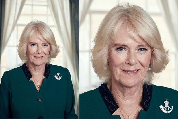 Le nouveau portrait de la duchesse de Cornouailles Camilla, réalisé le 13 octobre 2020 – A droite : détail de sa broche