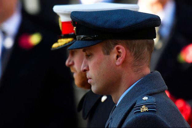 Les princes Harry et William lors d'une cérémonie de commémoration, le 10 novembre dernier à Londres.