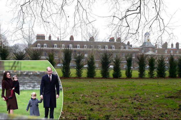 La nouvelle plantation d'arbres à Kensington Palace, le 27 janvier 2017 - En médaillon : le prince William, Kate Middleton et leurs enfants le 25 décembre 2016