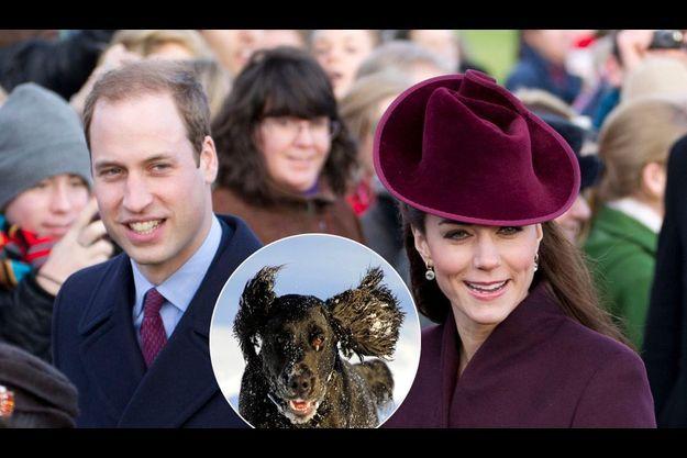 William et Kate à Sandringham, le 25 décembre. Au milieu un cocker noir, sembable au nouveau chien du couple princier.