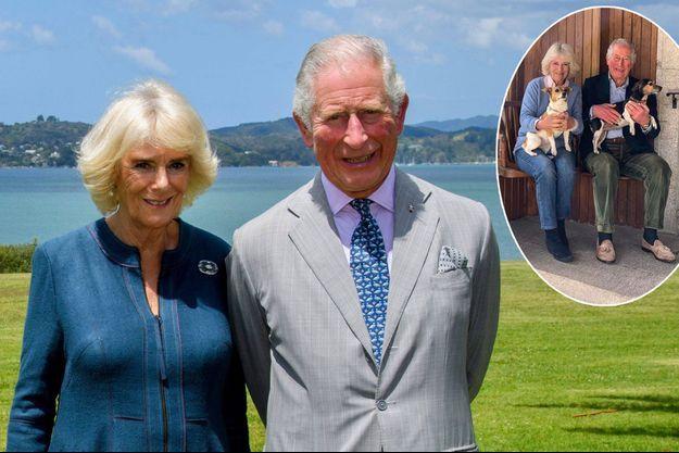 Le prince Charles et Camilla Parker Bowles le 20 novembre 2019. En vignette, détail du portrait pour leurs 15 ans de mariage, le 9 avril 2020