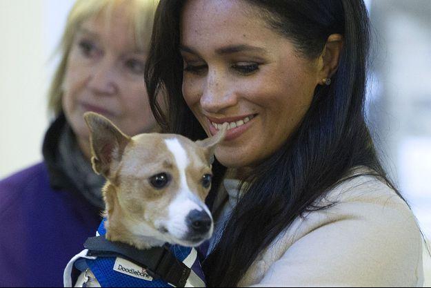 Meghan Markle en 2019, en visite dans un refuge pour animaux à Londres.