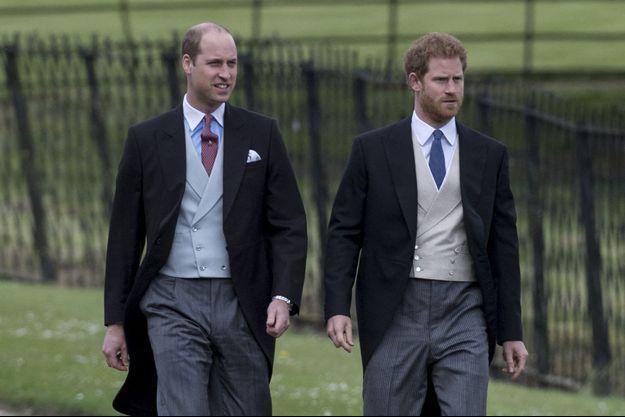 Les princes William et Harry en 2017