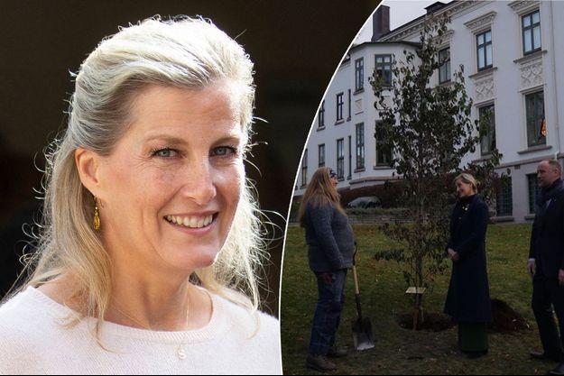 La comtesse de Wessex dans le Somerset le 24 septembre 2019. En vignette, à Oslo dans le jardin de l'ambassade britannique le 5 novembre 2019