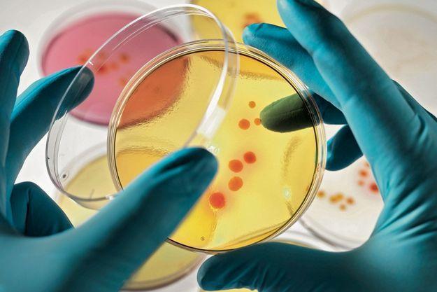 La peau est naturellement recouverte de micro-organismes qui vivent en bonne intelligence avec nos cellules. La cosmétique se doit de préserver cet équilibre.