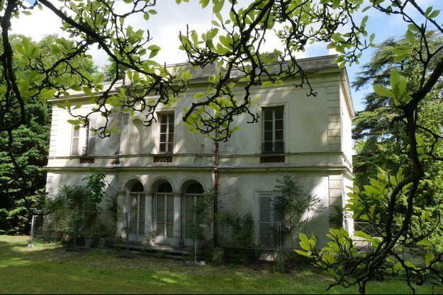 Le Chêne de Bougival comme un drapeau flamboyant au cœur d'une végétation luxuriante.