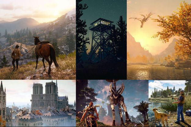 "De g. à dr., images extraites de ""Red Dead Redemption 2"", ""Firewatch"", ""The Elder Scrolls V : Skyrim"", ""Assasin's Creed Unity"", ""Horizon: Zero Dawn"" et ""Far Cry 5""."